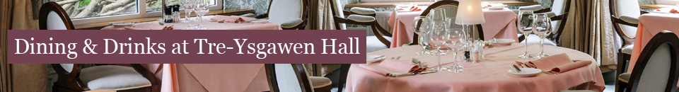 Dining & Drinks at Tre-Ysgawen Hall