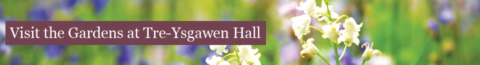 Visit the Gardens at Tre-Ysgawen Hall