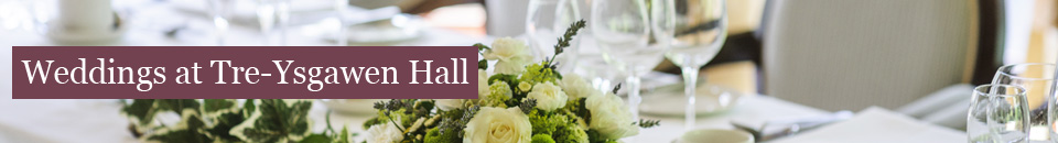 Weddings at Tre-Ysgawen Hall